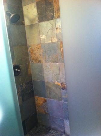 Avalon Lodge : luxury shower