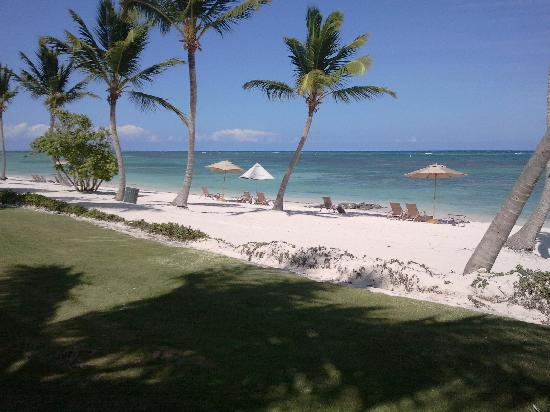 Tortuga Bay Hotel Puntacana Resort & Club: La plage, nettoyée chaque jour sur 2km...