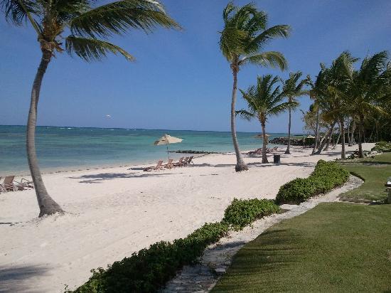 Tortuga Bay Hotel Puntacana Resort & Club: Parasols et chaises bien espacés