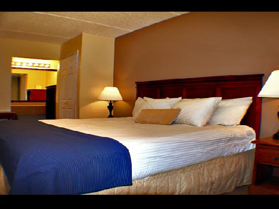 Econo Lodge Columbus: Single King Room