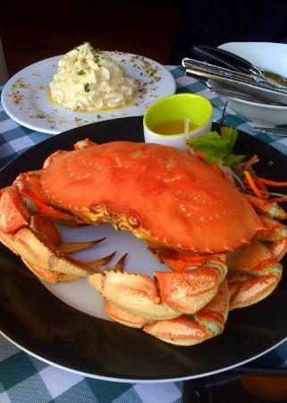 McKeown's : Fresh Crab from our Tank -Pick your Lobster or Crab!