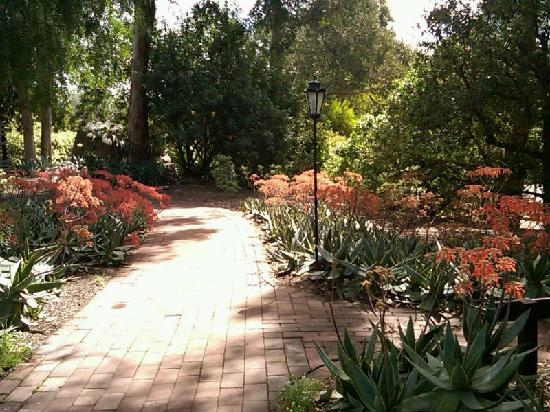 Rancho La Puerta Spa : walkways