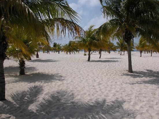 Sol Cayo Largo: It's all about the beach