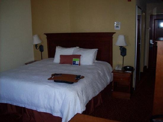 Hampton Inn & Suites Grenada : Single Standard Room