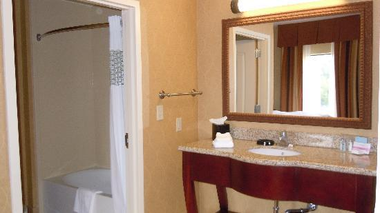 Hampton Inn Sevierville: bathroom/shower seperate from vanity area