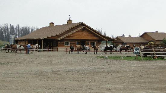 Winding River Resort : Horse Barn