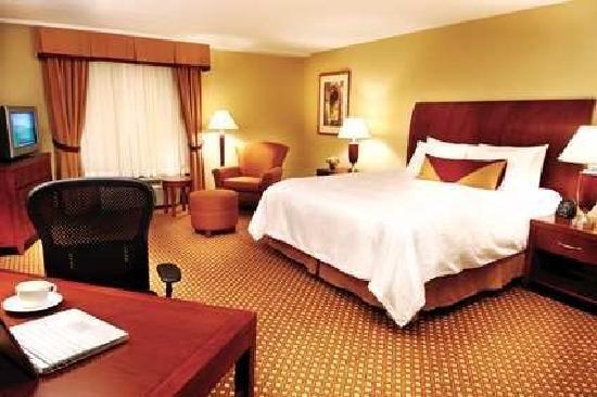 Double Standard Room Picture Of Hilton Garden Inn Starkville Starkville Tripadvisor