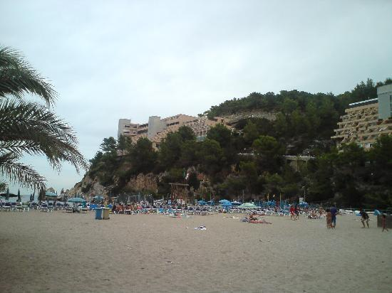 Hotel Ole Galeon Ibiza: The hotels looking from the beach. Galleon on far left