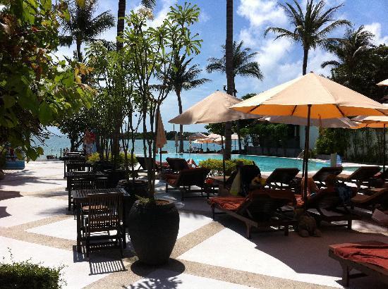 Iyara Beach Hotel & Plaza : pool area