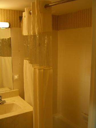 Comfort Inn Conference Center: Shower