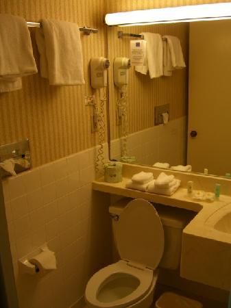 Comfort Inn Conference Center: Bathroom
