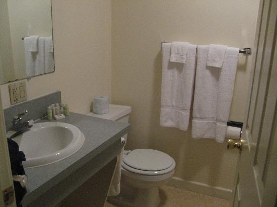 Wyalusing Hotel: room 28 bathroom