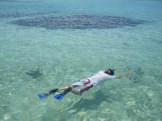 Foto de grand oca maragogi resort maragogi piscinas for Piscinas naturales chile