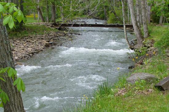 Barnett Cabin Rentals: The trout stream