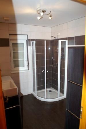 Les Gites de l'Orchidee du Ried : Salle de bain, coté douche