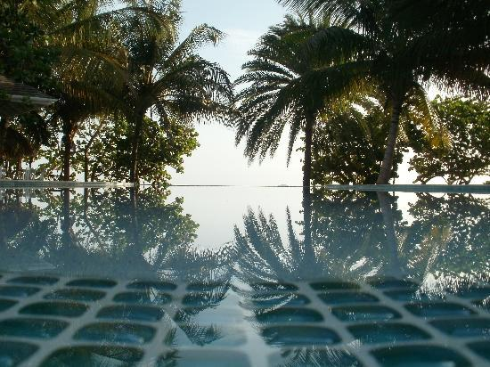 Coconut Beach Club: Infinity pool