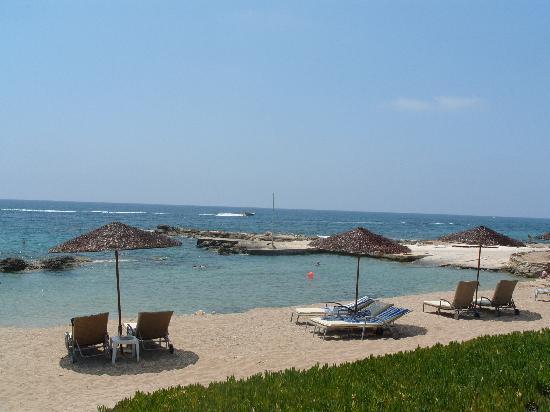 Louis Imperial Beach : Imperial Beach Hotel