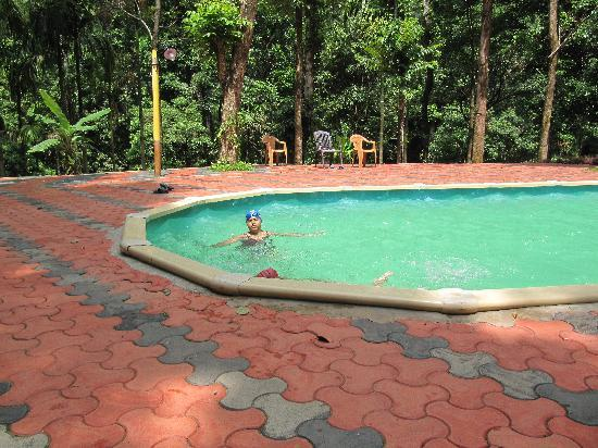 Vythiri, Indien: Swimming Pool