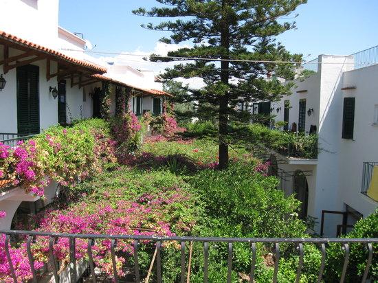 Hotel Pineta : cortile