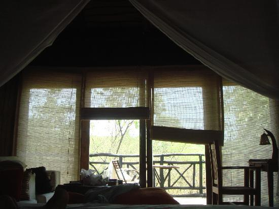 Pugdundee Safaris Tree House Hideaway: View from one's bed