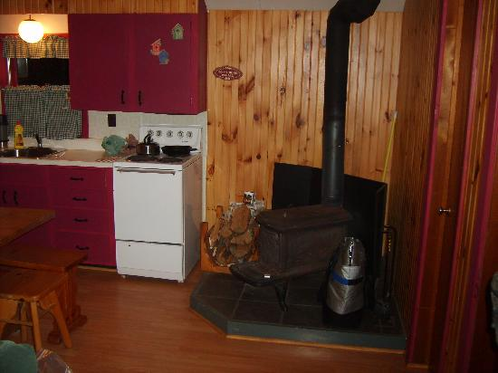 Woodland Echoes Resort : pictures of the kitchen and fire place