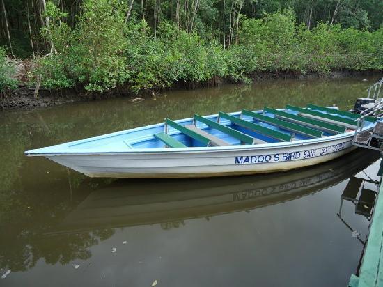 Caroni, Trinidad: Madoo's Company Boats