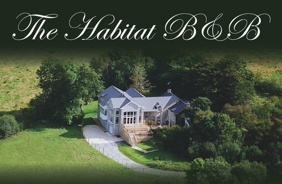 The Habitat B&B