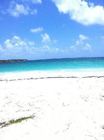 """""""Blue Beach"""""""