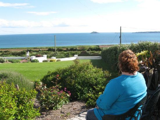 Ballymacoda, Ireland: Sitting taking in the view!
