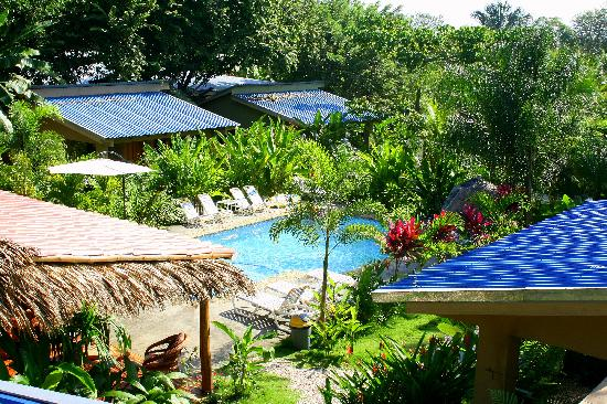 Zula Inn Aparthotel: Enjoy the secluded pool surrounded by tropical gardens!