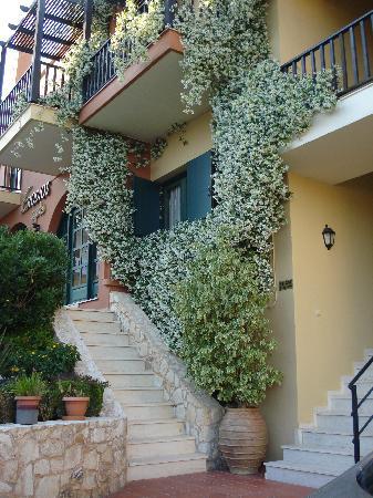 beautiful Jasmine at front of Erodios apartments