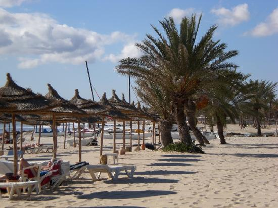 Hotel Golf Beach: De mon transat de la plage