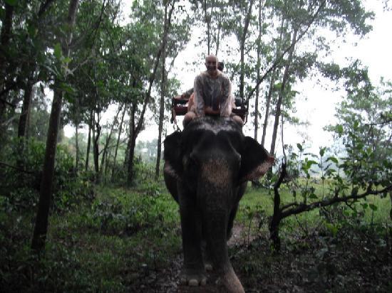 Khao Lak Land Discovery - Day Tours: The Elephant Ride