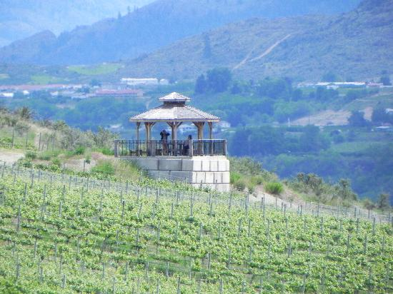 Burrowing Owl Estate Winery Guest House: lookout