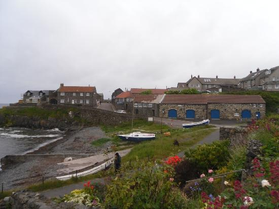 Dunstan, UK: Craster village, 10 mins walk