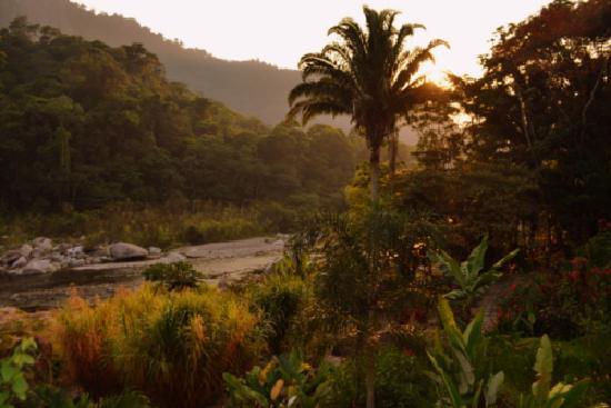 Villas Pico Bonito: View of the river