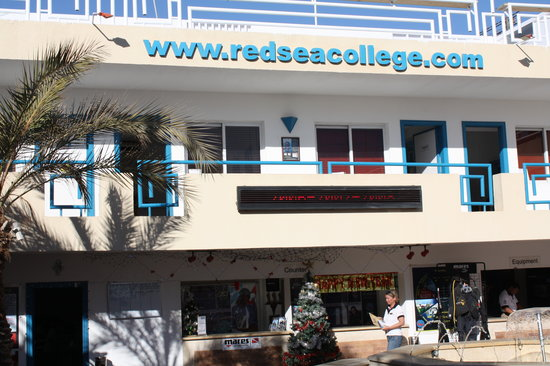Red Sea Diving College : Red Sea College