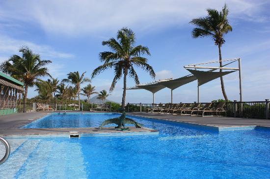 Nisbet Plantation Beach Club : The pool