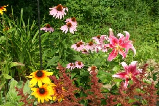 Weathertop Mountain Inn: Lush Summer Gardens