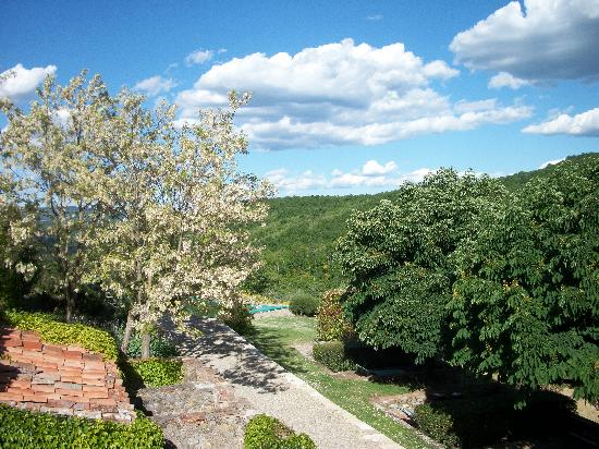 Fattoria Tregole: One of the views from our room, the blooming tree smelled so sweet. Great views all around!