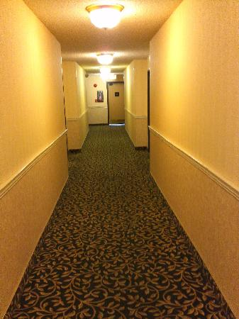 Ramada Chatsworth: hallway