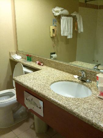 Ramada Chatsworth: bathroom