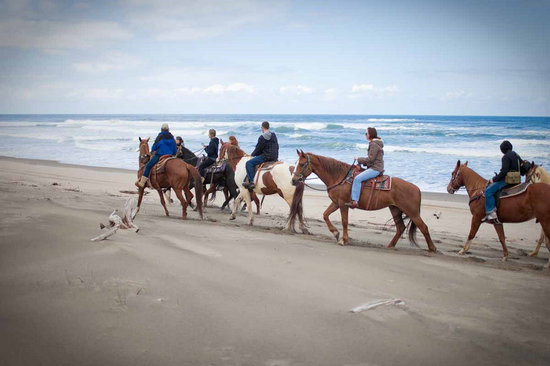 Pacific City, Орегон: Beach Ride Lincoln City Oregon