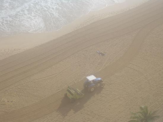San Juan Marriott Resort & Stellaris Casino: Cleaning the beach!!