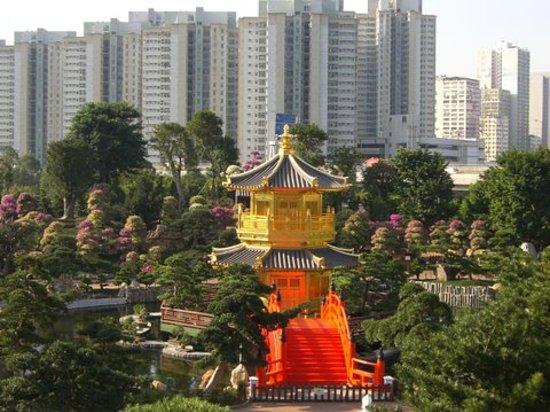Hong Kong, China: Nan Lian against city background