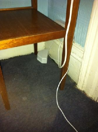 Langland Hotel: mousetrap
