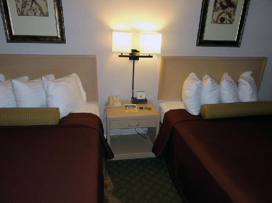 貝斯特韋斯特諾斯伍茲酒店照片