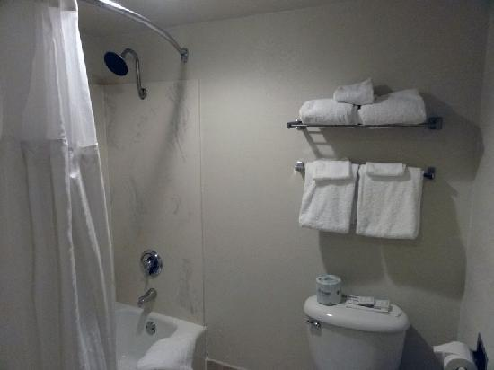 Best Western Plus Northwoods Inn: Bathroom