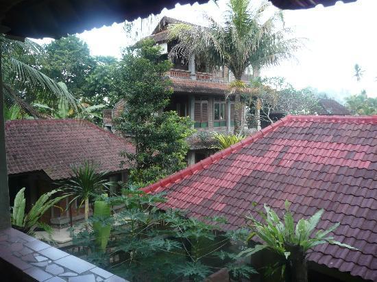 Ketut's Place: vue sur les chambres depuis notre terrasse