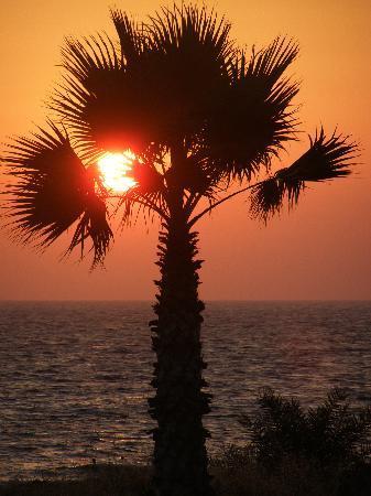 Kefalonitis Hotel Apts.: Sunset